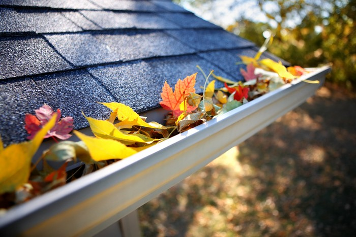Gutter-Replacement-Edgewood-WA