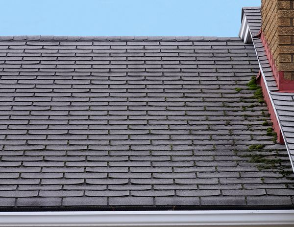 Roof-Leak-Repair-Burien-WA